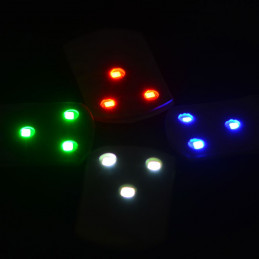 Discgolfar.ee LED Light